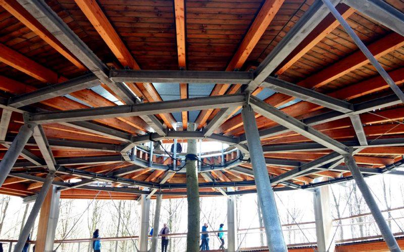 Aufwändige-Konstruktion-des-Aussichtsturms-am-Baumwipfelpfad3©RosiKmitta