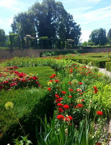 Garten-am-Kurfürstlichen-Schloss-in-Koblenz3_©RosiKmitta