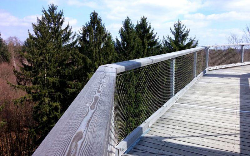 Rampe-am-Aussichtsturm-vom-Baumwipfelpfad©RosiKmitta